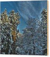 Sunny Winter Day Wood Print