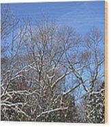 Sunny Winter Sky Wood Print