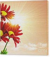 Sunrays Flowers Wood Print