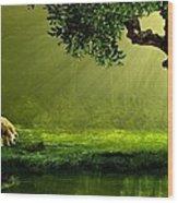 Sunrays In An Ireland Sheep Pasture  Wood Print