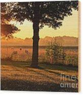 Sunrise 365 13 Wood Print