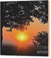 Sunrise 365 38 Wood Print