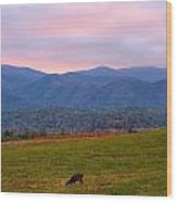 Sunrise And Deer In Cades Cove Wood Print