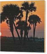 Sunrise And Group Of Palm Trees Wood Print