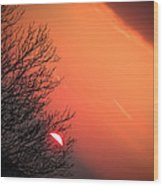 Sunrise And Hibernating Tree Wood Print
