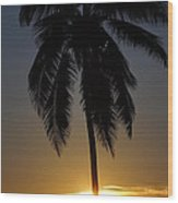 Sunrise And Palm Tree Wood Print