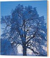 Sunrise And Tree Wood Print