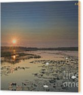 Sunrise And Water Lilies Wood Print