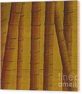 Sunrise At Bamboo Grove Wood Print