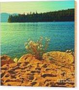 Sunrise At Daisy Lake Wood Print