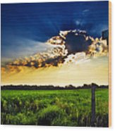 Sunrise At E5 And 180 Wood Print