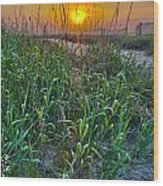 Sunrise At Myrtle Beach Wood Print