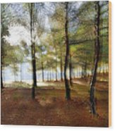 Sunrise At The Magic Forest Wood Print