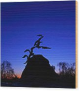 Sunrise At The Navy  Merchant Marine Memorial Wood Print