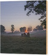 Sunrise At Whitemarsh Wood Print