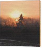 Sunrise At Willow Pond Wood Print