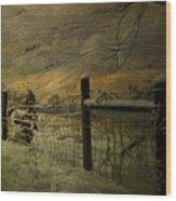 Sunrise Behind The Fence Wood Print by Kathy Jennings