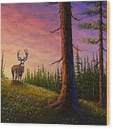 Sunrise Buck Wood Print