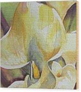 Sunrise Callas Wood Print