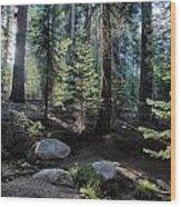Sunrise Creek Wood Print