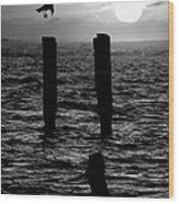 Sunrise Descent Bw - Outer Banks Ocracoke Wood Print