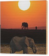 Sunrise Elephants Wood Print