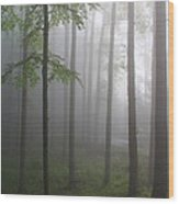 Sunrise Fog Wood Print by Melissa Petrey