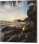 Sunrise Framed By Palm Trees And Rock Wood Print