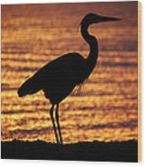 Sunrise Heron Wood Print