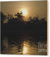 Sunrise In Amazon Wood Print