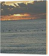 Sunrise In Florida Riviera Wood Print
