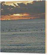 Sunrise In Florida Riviera Wood Print