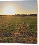 Sunrise In Oklahoma Wood Print