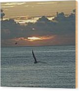 Sunrise In The Florida Riviera Wood Print