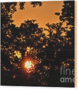 Sunrise In The Forest Wood Print