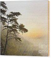 Sunrise In The Mist - D004200a-a Wood Print