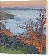 Sunrise Light  Wood Print