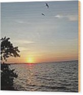 Sunrise Long Key State Park Wood Print by Susan Sidorski