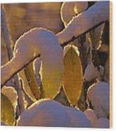 Sunrise On Autumn Snow Wood Print