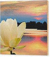 Sunrise On Lotus Lillie Wood Print