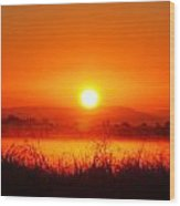 Sunrise On The Rice Fields Wood Print