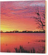 Sunrise Over Coongee Lakes Wood Print
