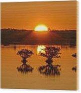 Sunrise Over Mangroves Wood Print