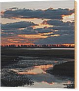 Sunrise Over Point Pelee Provincial Park Wood Print
