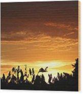 Sunrise Over The Milo Field Wood Print