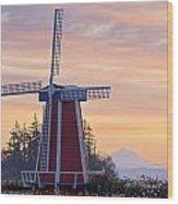 Sunrise Over Wooden Shoe Tulip Farm And Wood Print