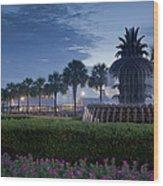 Sunrise Pineapple Fountain Wood Print