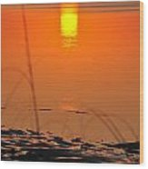 Sunrise Reflection Wood Print