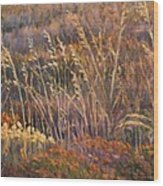 Sunrise Reflections On Dried Grass Wood Print