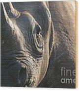 Sunrise Rhino Wood Print